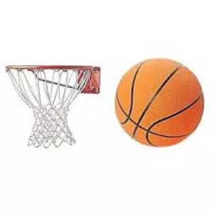 Combo of Basket Ball and Net