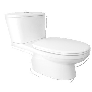 Charu Ceramic Two Piece Toilet CM18