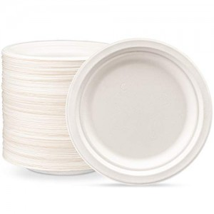 One Time Disposal Plate - 100 pcs